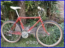 1986 F W Evans Retro / Vintage MTB / ATB. Handbuilt British frame, Reynolds 531