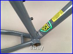 Jamis Dragon 29 29er MTB Bike Steel Frame Gray 15 SingleSpeed Sliding Dropouts