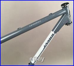 Jamis Dragon 29 29er MTB Bike Steel Frame Gray 21 SingleSpeed Sliding Dropouts