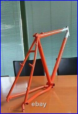 Rare NOS PEGORETTI POGO STICK mtb italian steel mountain bike frame DEDA NEW