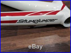 Specialized Stumpjumper S-Works Frame 19 (29er) never used