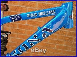 Superb Kona Stab Deluxe 17.5 DH race frame + Rockshox Vivid R2C, Spare swingarm