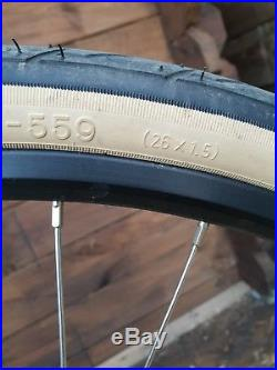 Trek Skye Ladies Mountain Bike 16 Inch Frame