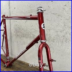 Vintage Bridgestone XO-4 Frame Set 22 Touring MTB Gravel Campagnolo Peterson FF