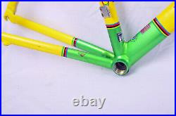 Vintage Greg Lemond Maillot Jaune 56cm Road Bike Frame 700c Time Carbon Fork