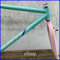 Vintage ROSS Frame Set Miami Vice Colorway 19 22 CRMO 80s MTB Roller Cam